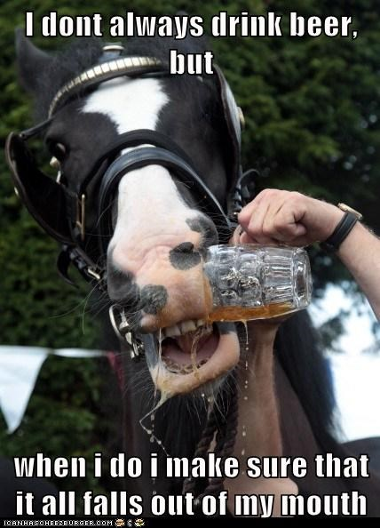animals beer horses political pictures - 6491715840