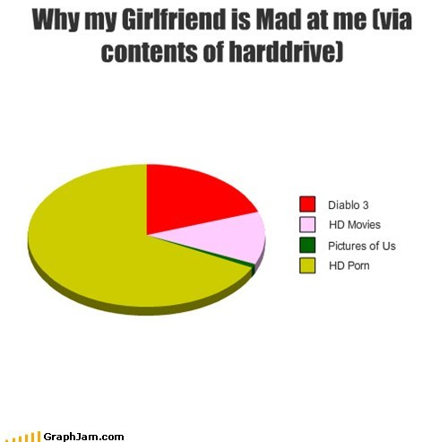 computers girlfriends Pie Chart pr0n relationships - 6492162304