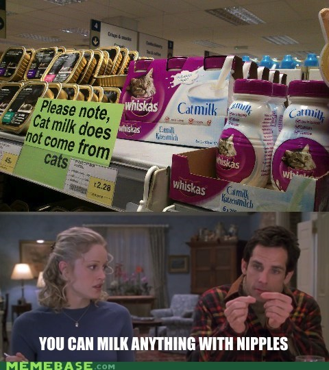cat,meet the parents,milk,the n word