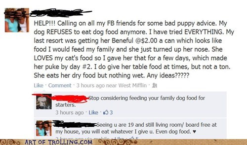 dog food facebook kids parenting - 6492557824