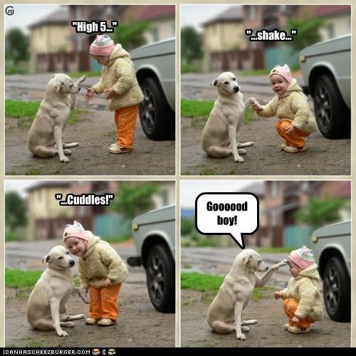 cute kid toddler training tricks what breed - 6492750336