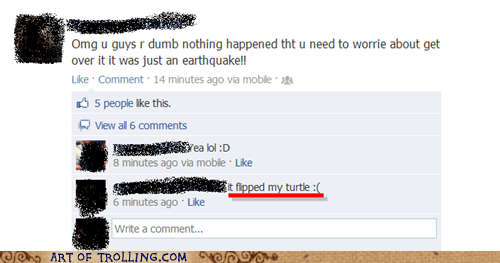earthquake,facebook,flip,turtle