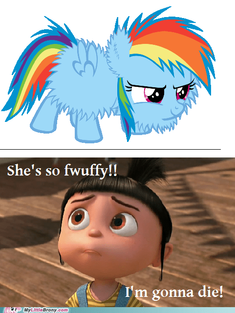 fwuffy gonna die rainbow dash the internets - 6493235712