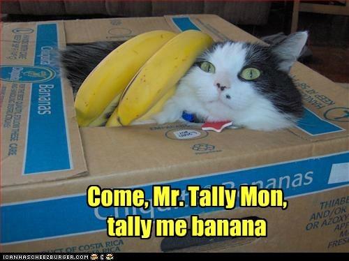 Come, Mr. Tally Mon, tally me banana