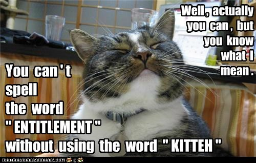 captions Cats entitlement fancy spell spelling - 6493891072