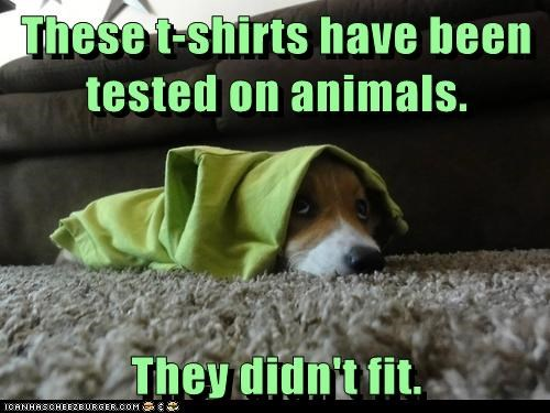 These t-shirts have been tested on animals. They didn't fit.