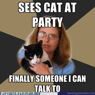 cat at party,Cats,parties,someone to talk to