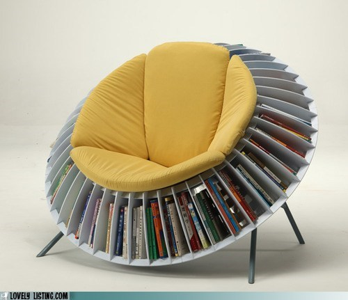 bookcase,chair,seating,shelves