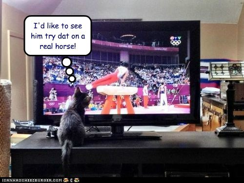 captions Cats gymnastics horse London 2012 olympics pommel horse real