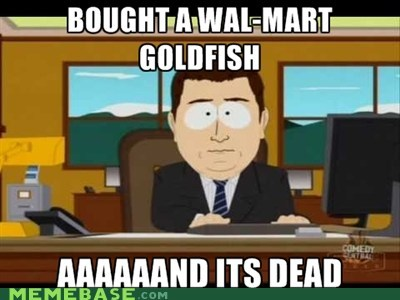 and-its-gone,dead,fish,Memes,South Park,Walmart