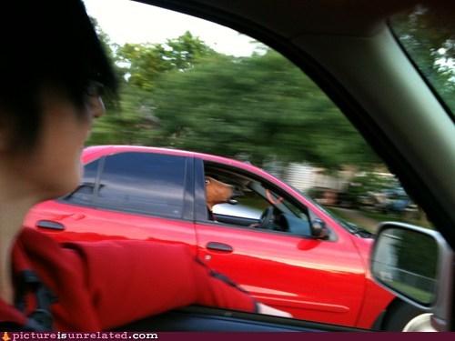 kentucky horse head car mustang driving - 6495000832