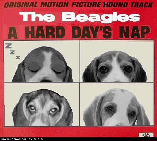 The Beagles -  Hard Day's Nap