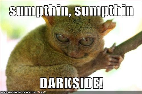 bushbaby dark side Emperor Palpatine something something star wars