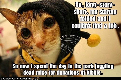 broke captions Cats donations economy kibble outfit startup unemployed - 6495356160