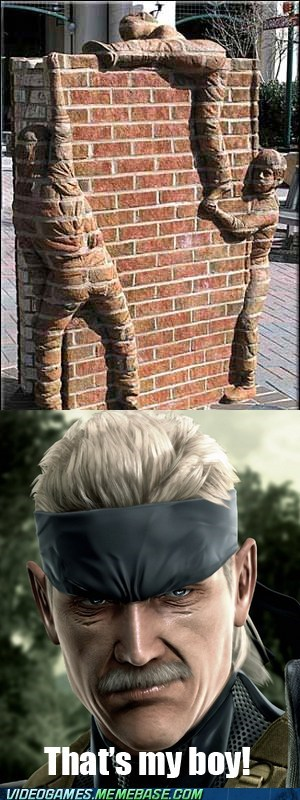 hidden,IRL,metal gear solid,stealth