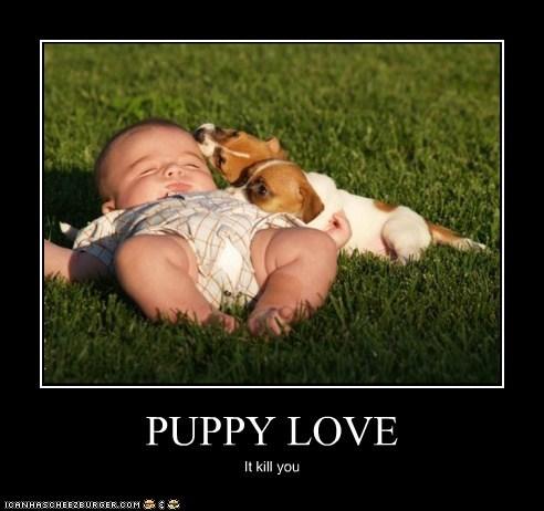 PUPPY LOVE It kill you
