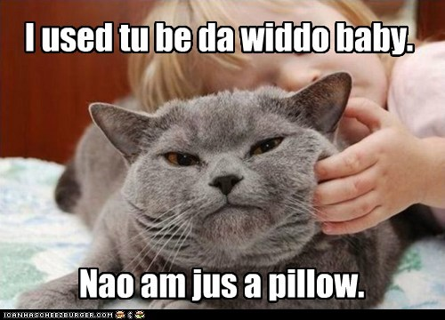I used tu be da widdo baby. Nao am jus a pillow.