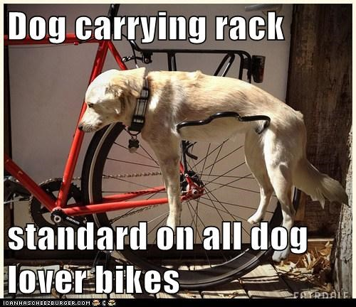 Dog carrying rack  standard on all dog lover bikes