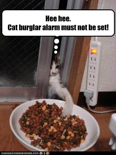 Hee hee. Cat burglar alarm must not be set!