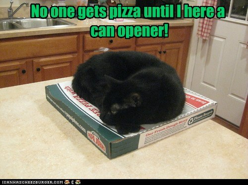 blackmail can can opener captions Cats pizza tuna