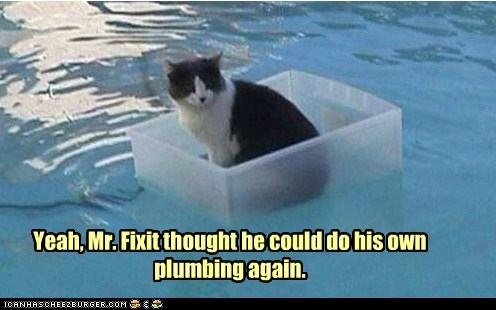 boat captions Cats fix flood handyman plumbing