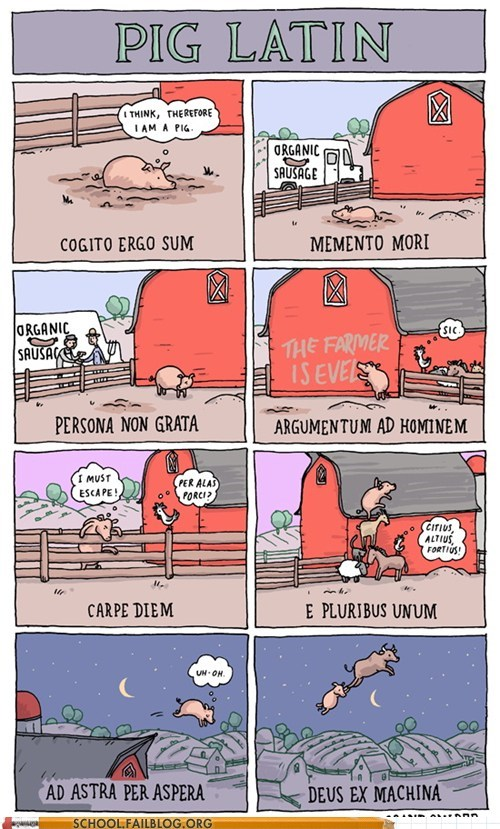 class is in session,Incidental Comics,pig latin 101,pig,so deep