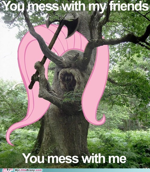 angry fluttershy fluttertree meme youre-going-to-love-me - 6497095424