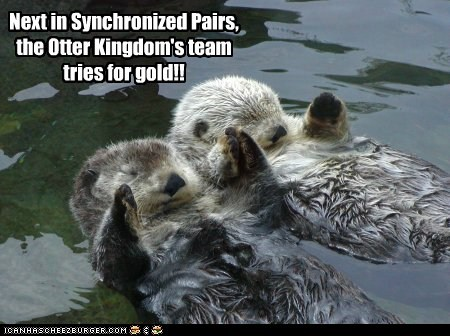 Next in Synchronized Pairs, the Otter Kingdom's team tries for gold!!