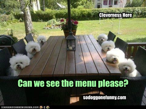 Can we see the menu please? Cleverness Here sodoggonefunny.com
