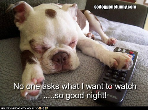 No one asks what I want to watch .....so good night! sodoggonefunny.com