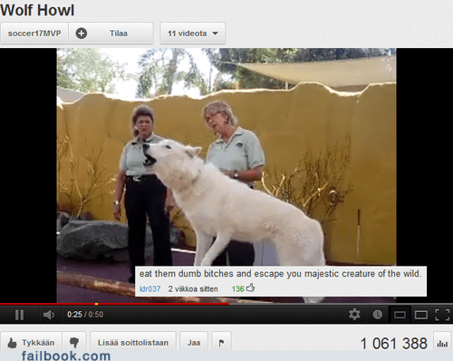 animals,comment,wolf,youtube,youtube comment