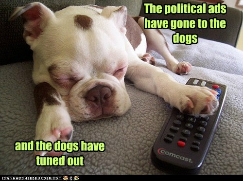bulldog dogs nap attack political advertisement puppy tv remote
