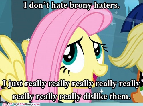 fluttershy the internets - 6499844352