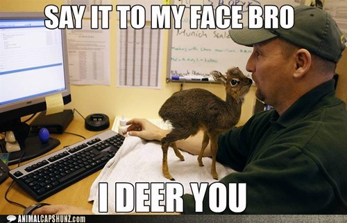 confrontation,dik dik,i dare you,say it to my face
