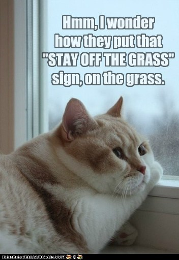 "Hmm, I wonder how they put that ""STAY OFF THE GRASS"" sign, on the grass."