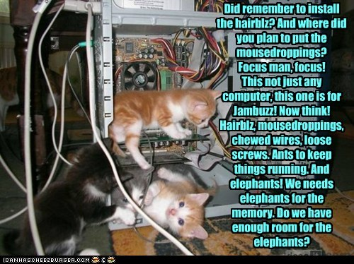 Did remember to install the hairblz? And where did you plan to put the mousedroppings? Focus man, focus! This not just any computer, this one is for Jambuzz! Now think! Hairblz, mousedroppings, chewed wires, loose screws. Ants to keep things running. And elephants! We needs elephants for the memory. Do we have enough room for the elephants?