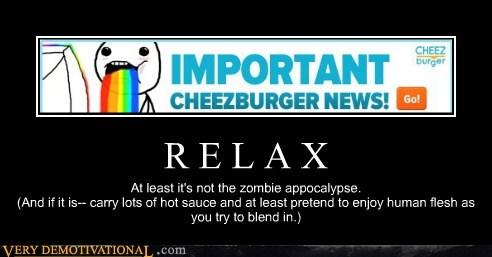 Cheezburger Image 6502494208