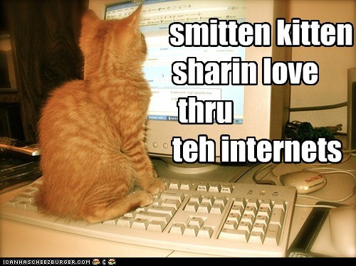 Smitten Kitten Cheezburger Funny Memes Funny Pictures