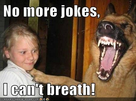 cant-breathe,dogs,german shepherd,jokes,laughing,little girl,so funny