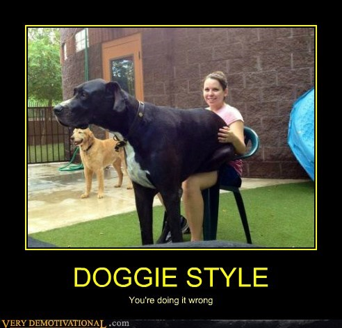 dogs doggy huge style wtf - 6503517952