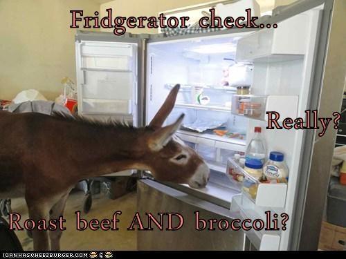 Cheezburger Image 6503639040