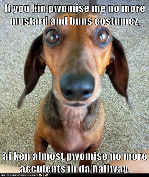 accidents,captions,costume,dachshund,dogs,hotdog,lets-make-a-deal,please no,promise
