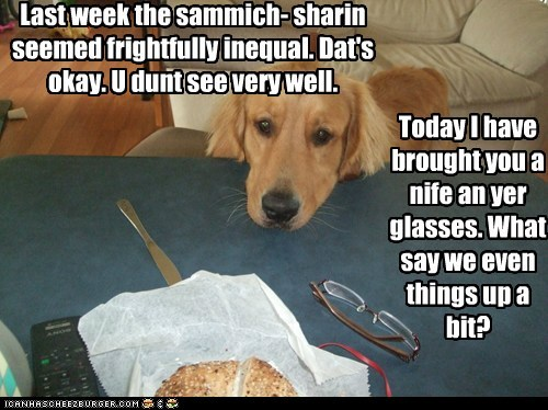 dogs,glasses,golden retriever,not fair,sandwich,sharing is caring