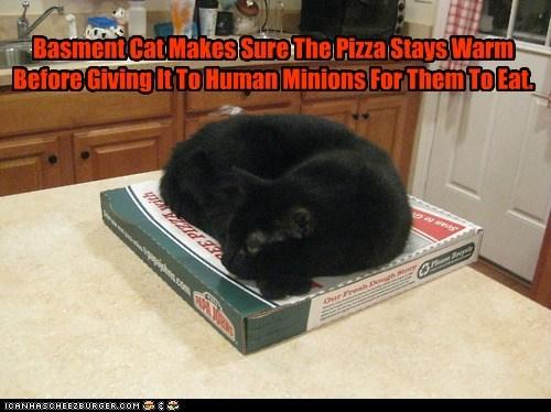 Cheezburger Image 6504319232