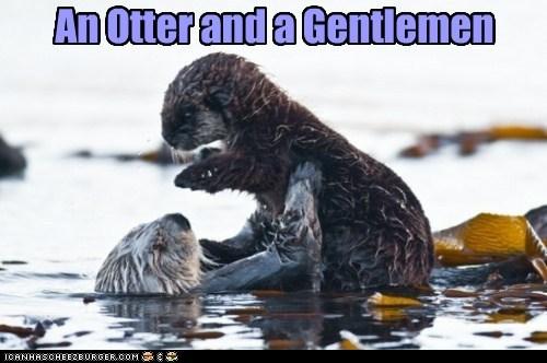 An Otter and a Gentlemen