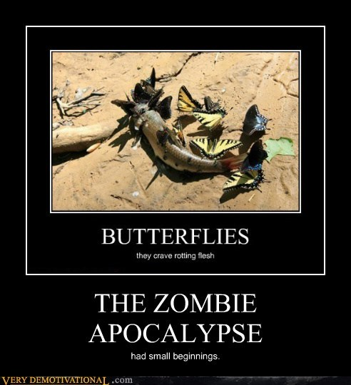 butterflys,corpse,fish,zombie