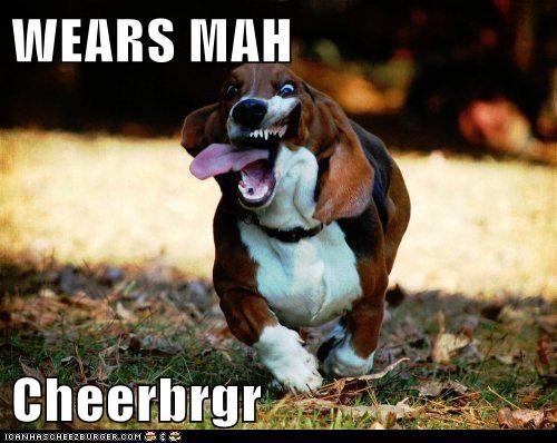 Cheezburger Image 6505423104