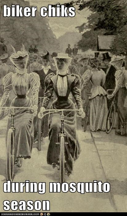 bicycles,hats,mosquitos,proper,veils,women