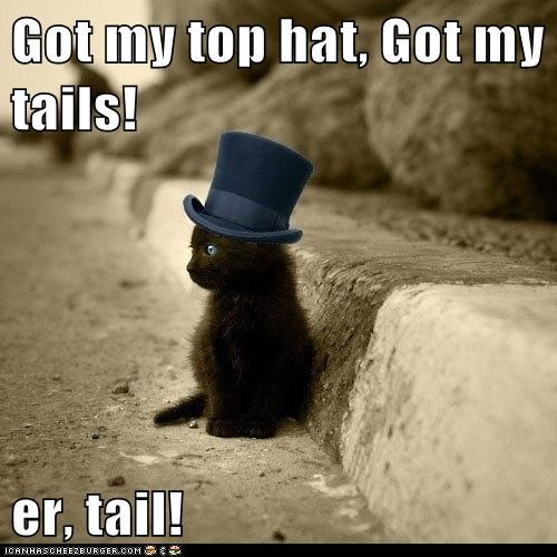 Got my top hat, Got my tails!  er, tail!