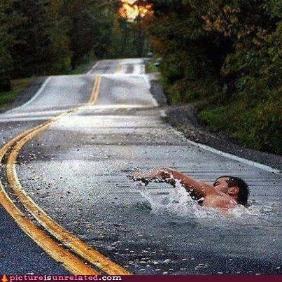 puddle,road,shopped pixels,swimming,wtf